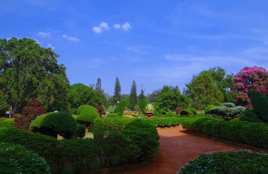 Bangalore Botanical Garden